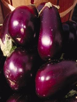 phytothérapie de l'aubergine